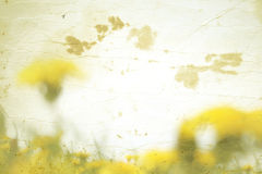 Old paper with spring background royalty free stock photo