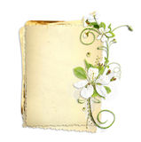 Old paper stack with white cherry flowers Stock Images