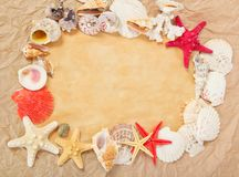 Old paper, starfishes and cockleshells Royalty Free Stock Image