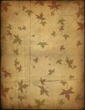 Old paper texture and compass Royalty Free Stock Photo