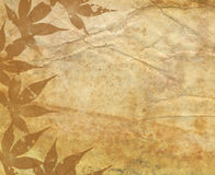 Old Paper Texture With Decorative elements stock illustration