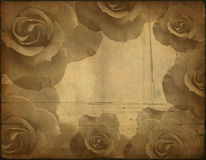 Old paper texture, roses Royalty Free Stock Images
