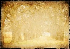 Old paper, with tree-avenue structure, background. In grunge look stock image