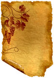 Old paper with vine ornament Royalty Free Stock Image