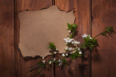 Old paper on the wood background Royalty Free Stock Photography