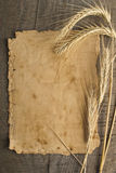 Old paper on wood background with wheat and rye ears Stock Image
