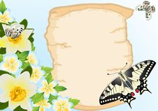 Old papyrus, flowers and butterflies Stock Image