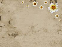 Old parchment of frame and  sunflower Royalty Free Stock Image