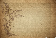 Old parchment paper. Great image of old parchment paper with floral design royalty free illustration