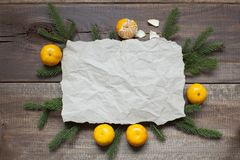 Old parchment paper with copy space on branch.  Royalty Free Stock Images