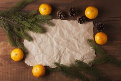 Old parchment paper with copy space on branch Stock Image