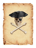 Old parchment and pirate skull Royalty Free Stock Image