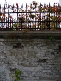 Old Park, an abandoned mansion, autumn, falling yellow leaves. Park fence, woven plant, the structure of old plaster royalty free stock photos