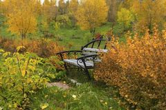 Old bench in the colors of the autumn park stock photo