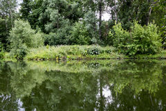 Old park with ponds. Royalty Free Stock Photos