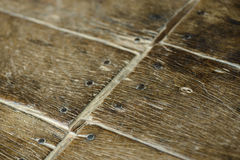 Old parquet Royalty Free Stock Image