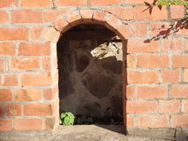 An old partially-built brick oven. An old unfinished red brick oven on bequia in the windward islands Stock Photo