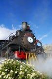Old Patagonian Express Stock Image