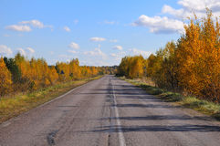 Old patched road between autumn trees. An old, patched asphalt road between autumn bushes and trees royalty free stock photography