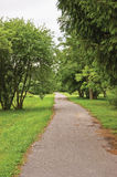 Old pathway in woods, aged weathered tarmac asphalt trail, large arboretum, peaceful tranquil verdant garden park walk pavement. Trail, various forest trees stock photos