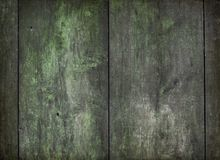 Old patinated wooden texture Stock Images