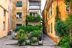 Free Old Patio With Green Plants In Sarzana Stock Images - 98875044