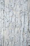 Old patterned wooden background in grey or light blue with flake Royalty Free Stock Photography