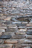 Old pavement after the rain Royalty Free Stock Photo