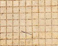 Old Pavement Texture Royalty Free Stock Image