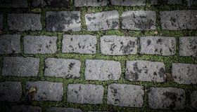 Old paving stones with grass. background Royalty Free Stock Images