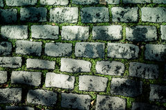 Old paving stones with grass. background Royalty Free Stock Image