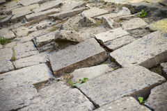 Old paving tiles Royalty Free Stock Photos
