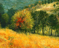 The Old Pear. An oil painting on canvas of a colorful autumn rural landscape with multi colored old pear tree, growing on a sunny meadow near the forest Stock Photos