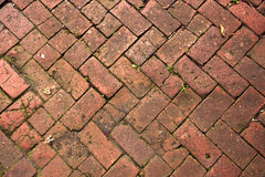 Old Pedestrian Brick Paveway Royalty Free Stock Photography