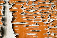Old and peeled creaky paint. In course of time the paint of white tone peeled off the old planks and crackled, wood texture, background, colorful, cracks in Stock Photography