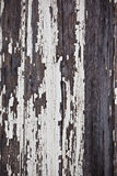 Old peeled off wooden planks surface background Stock Images