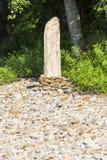 Old peeled tree stems on stones Stock Photo