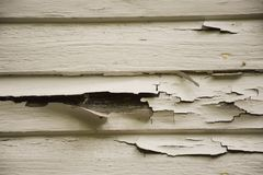 OLD PEELING CRACKED WHITE PAINT ON WOOD SIDING. The siding of a house shows the peeling and cracked white paint that shows the need for a new coat stock photography