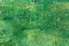 Old Peeling Green Paint Wall Background Royalty Free Stock Photo