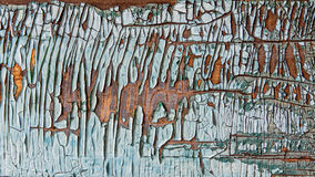 Old Peeling Painted on a Scratched Wooden Wall Royalty Free Stock Photography