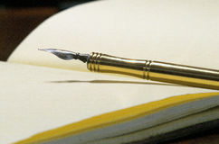 Old pen. Vintage pen over an old classic paper diary Royalty Free Stock Image