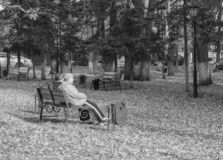 Old people on a bench in the Park stock photo