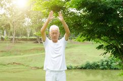 Old people practicing martial arts in the park Stock Photography