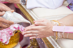 Old people use conch shell wedding Stock Image