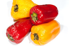 Old pepper Royalty Free Stock Photography