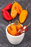 Old peppers with mold, unhealthy and disgusting food concept. Old wrinkled peppers with mold, concept of unhealthy and disgusting food stock photography