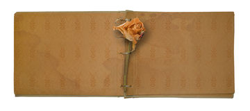 Old photo album with beautiful dried rose Royalty Free Stock Photos
