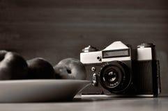 Old photo camera black and white photo. Old photo camera in black and white photo Royalty Free Stock Photo