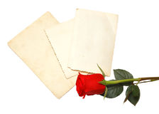 Old photo and red rose Royalty Free Stock Photos