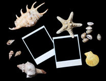 Old photo with sea shells isolated Stock Photos